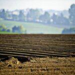 «Батьківщина» домоглася продовження мораторію на продаж сільськогосподарської землі