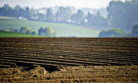 Радехівська районна рада проти продажу землі сільськогосподарського призначення