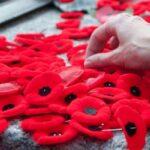 Михайло Цимбалюк про День скорботи і вшанування пам'яті жертв війни