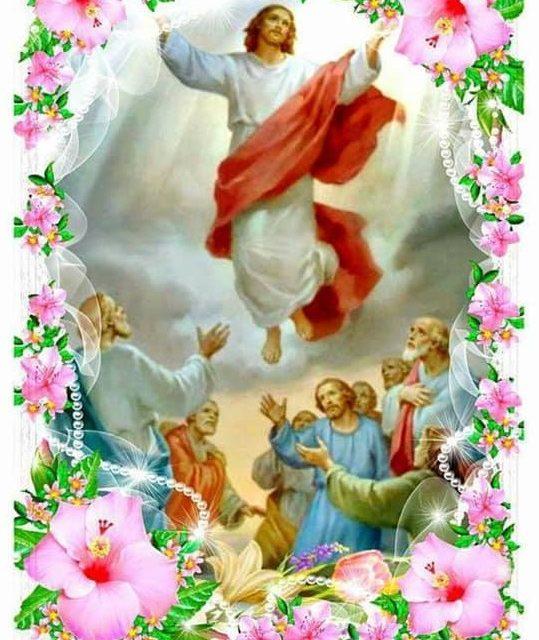Наталія Тимчій: Сьогодні величний день Вознесіння Господнього!