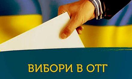 «Батьківщина» знову серед лідерів на виборах до рад ОТГ на Львівщині